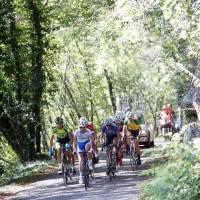 Uspešna nedelja kolesarjev KD »TANIN«
